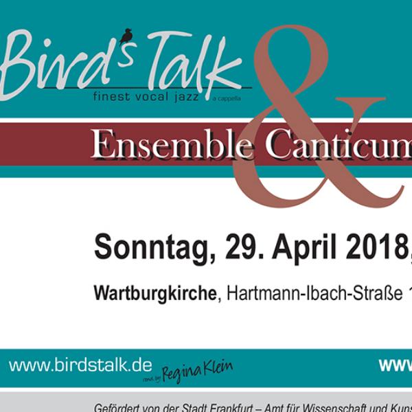 Concerto con i Bird's Talk